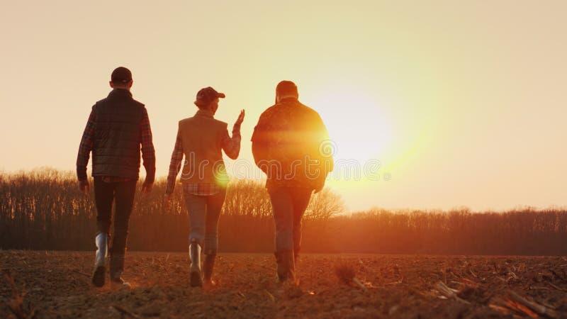 Trois agriculteurs s'attaquent en avant sur un champ labouré au coucher du soleil Jeune équipe d'agriculteurs photo libre de droits