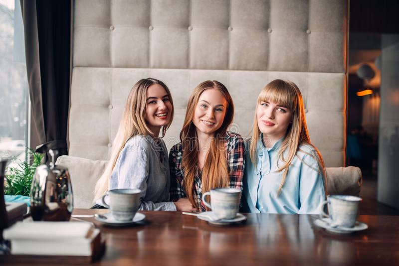 Trois amies attirantes prenant le déjeuner en café image stock