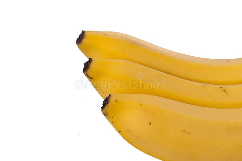 Trois bananes d'isolement sur le fond blanc photos stock