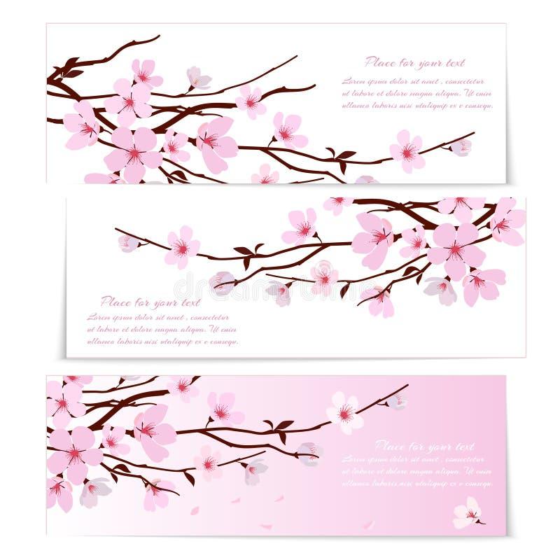 Trois bannières avec des fleurs de Sakura illustration stock