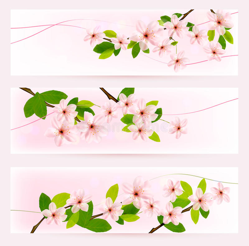 Trois bannières de ressort avec le brunch de floraison d arbre