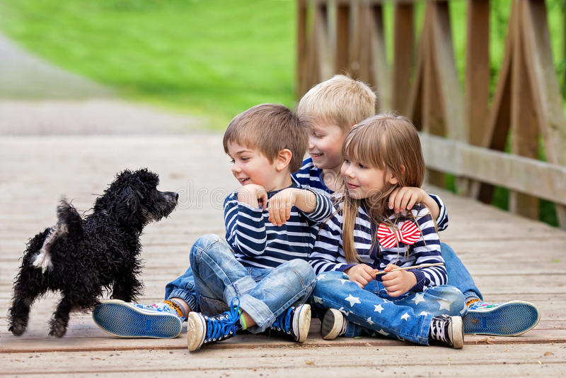 Trois beaux enfants adorables, enfants de mêmes parents, jouant avec le littl mignon photos libres de droits