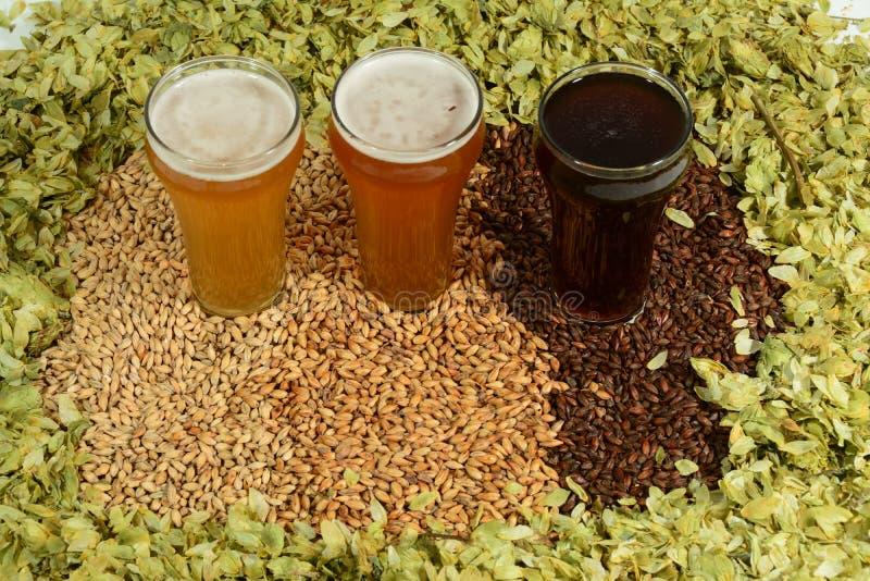 Trois bières colorées différentes photos stock
