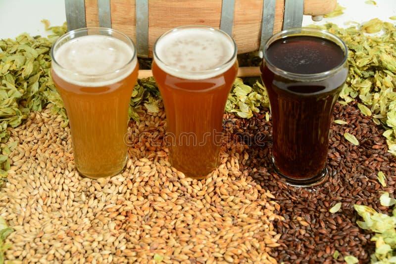 Trois bières colorées différentes image stock