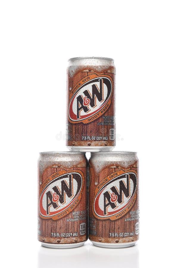 Trois 7 boîtes de 5 onces d'A et de bière de racine de W photos stock