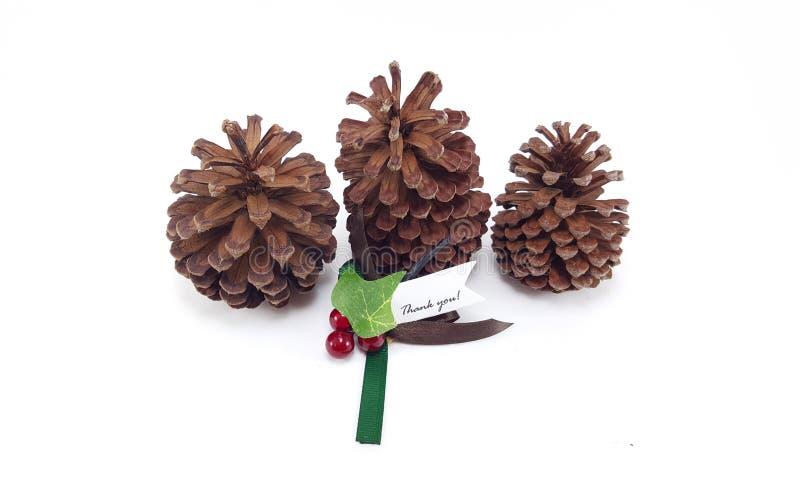 Trois cônes de pin avec Noël vous remercient d'étiqueter photo stock