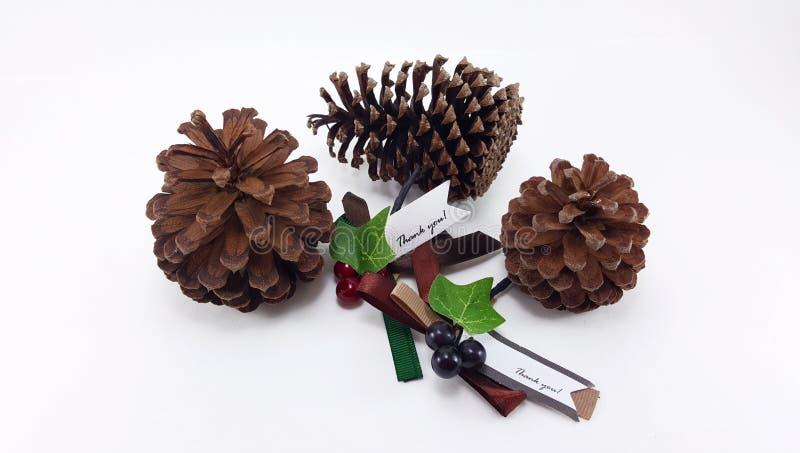 Trois cônes de pin avec Noël vous remercient d'étiqueter image stock