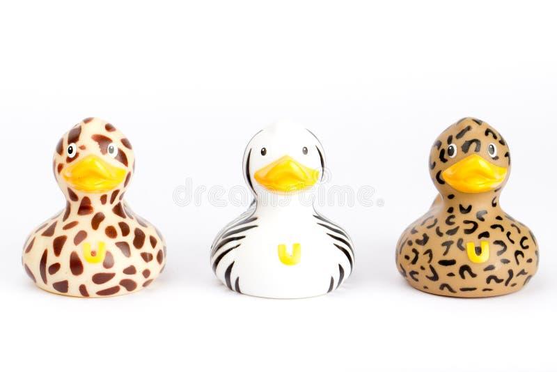 Trois canards sauvages en plastique photo stock