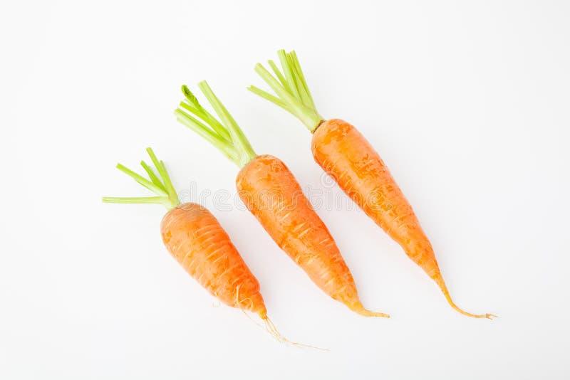 Trois carottes à l'arrière-plan blanc images stock