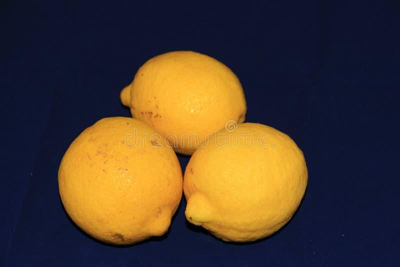 Trois citrons images libres de droits