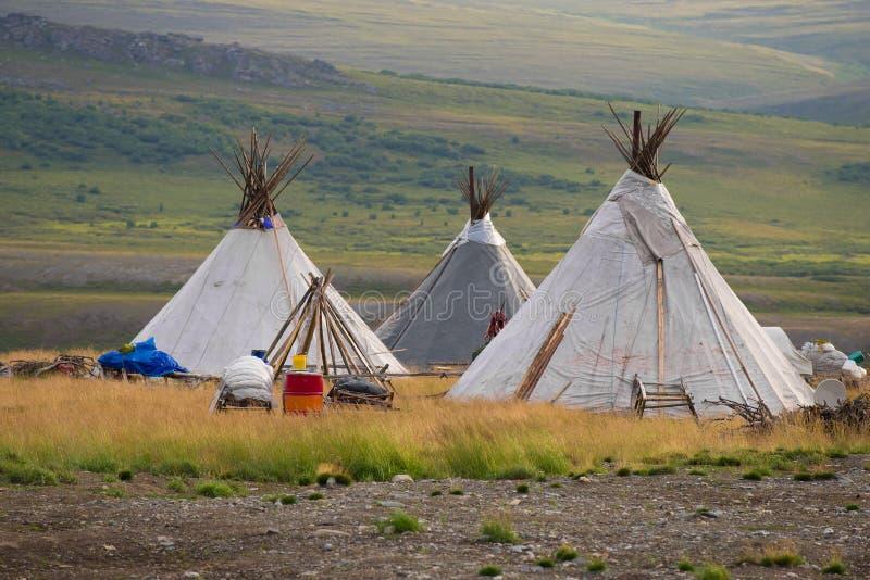 Trois copains Colonie de vacances des bergers nomades de renne dans les Monts Oural polaires photo libre de droits