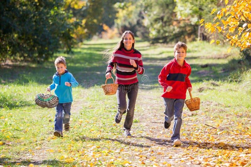 Trois enfants courant sur la forêt d'automne avec des paniers images stock
