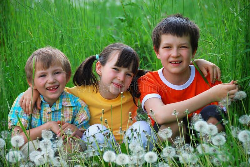 Trois enfants dans un pré photographie stock
