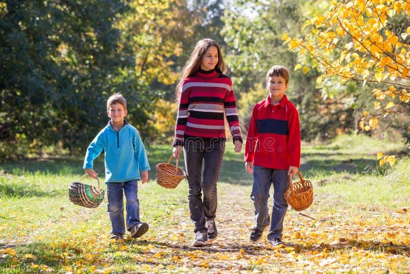 Trois enfants marchant sur la forêt d'automne avec des paniers photos libres de droits
