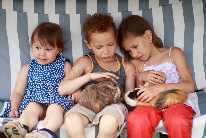 Trois enfants s'asseyent dans un hamac et jouent son animal de compagnie de cobaye photographie stock