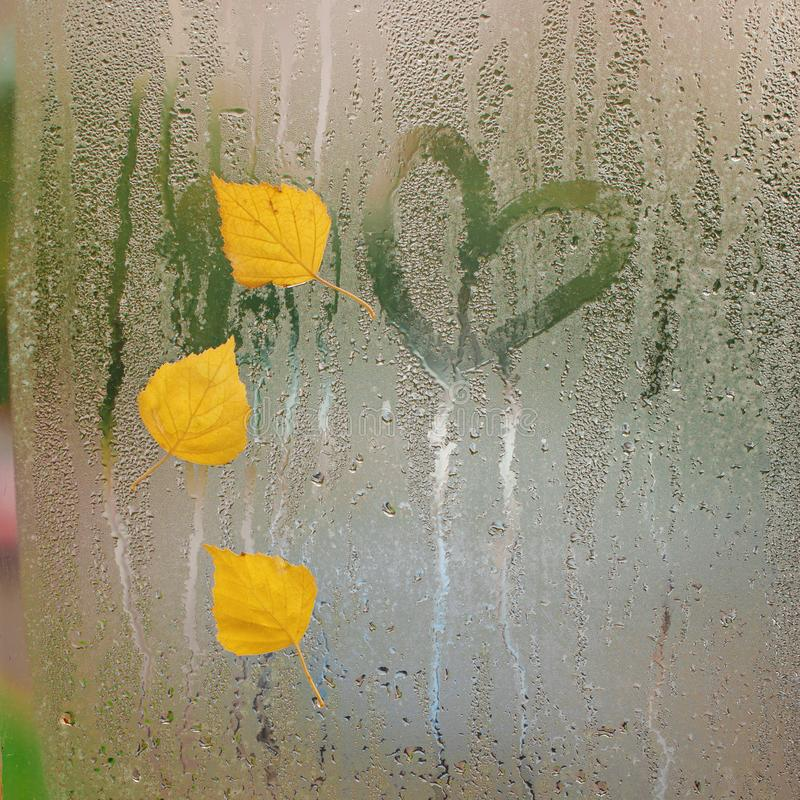 Trois feuilles d'automne jaunes avec le coeur sur la fenêtre après pluie Humeur d'automne de concept photo libre de droits