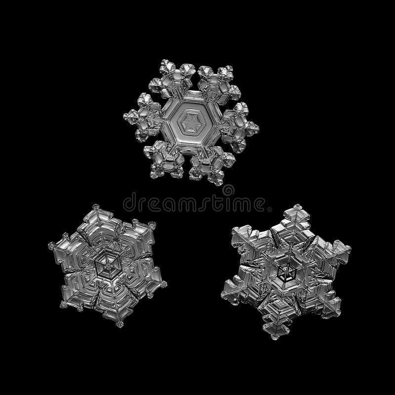 Trois flocons de neige d'isolement sur le fond noir image libre de droits