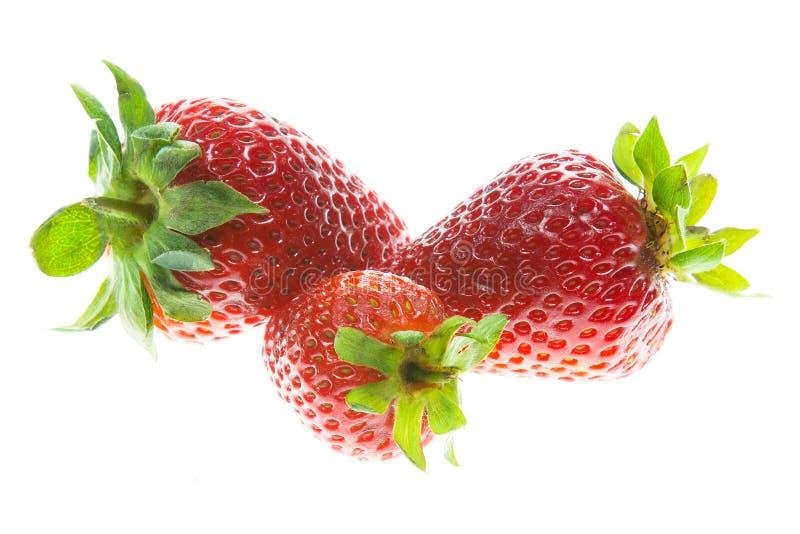 Trois fraises photographie stock