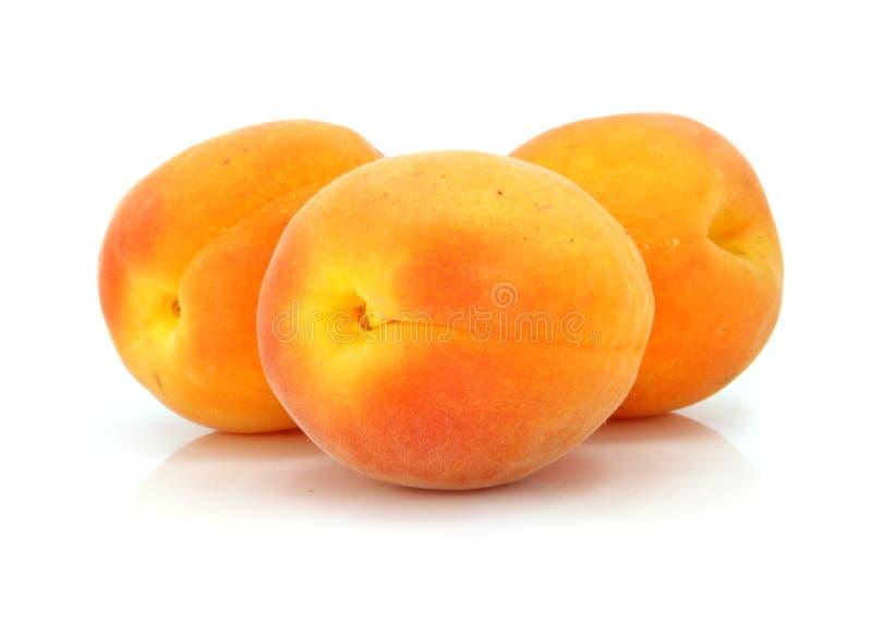 Trois fruits frais d'abricot d'isolement image libre de droits