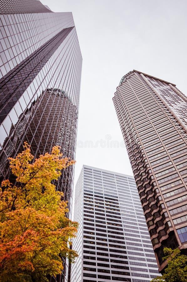 Trois gratte-ciel à Seattle photographie stock