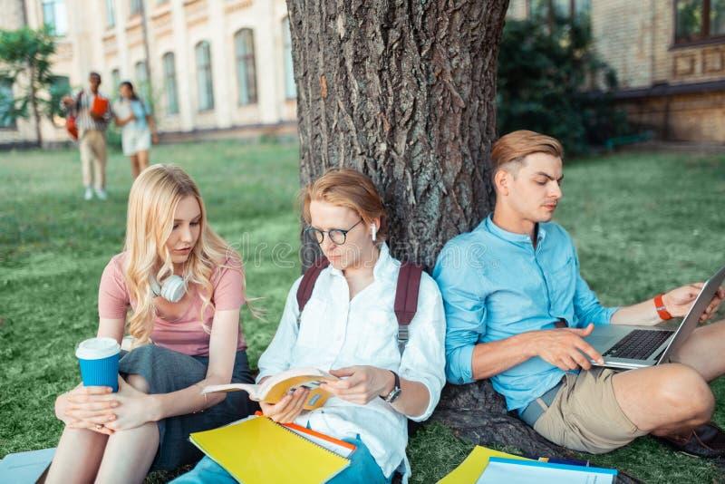 Trois groupmates étudiant sous le grand arbre image libre de droits