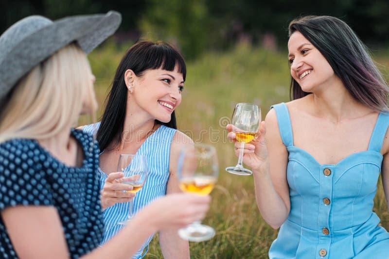 Trois jeunes femmes, blonds, brune et avec les cheveux teints dans les robes bleues, et des chapeaux, s'asseyent sur le plaid et  images stock