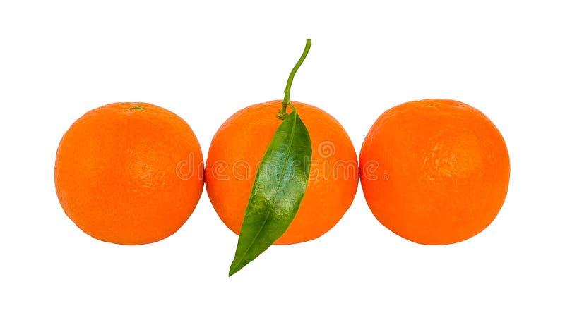 Trois mandarines oranges mûres avec la feuille verte dans une rangée d'isolement photos stock