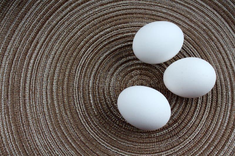 Trois oeufs blancs images stock