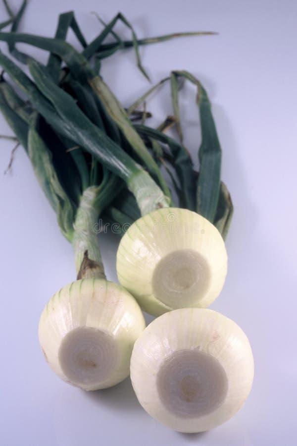 Trois Oignons Photo stock