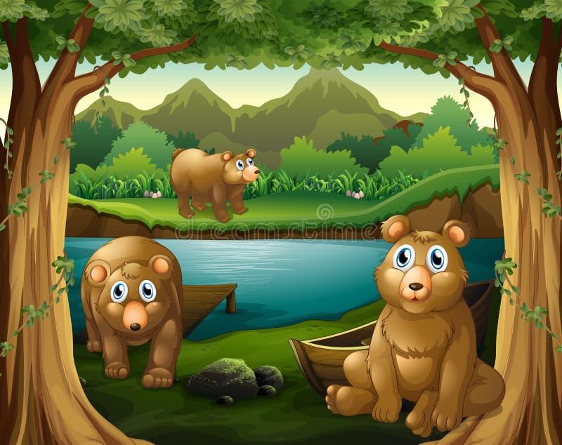 Trois ours vivant à côté de la rivière illustration de vecteur