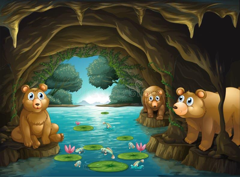 Trois ours vivant dans la caverne illustration stock