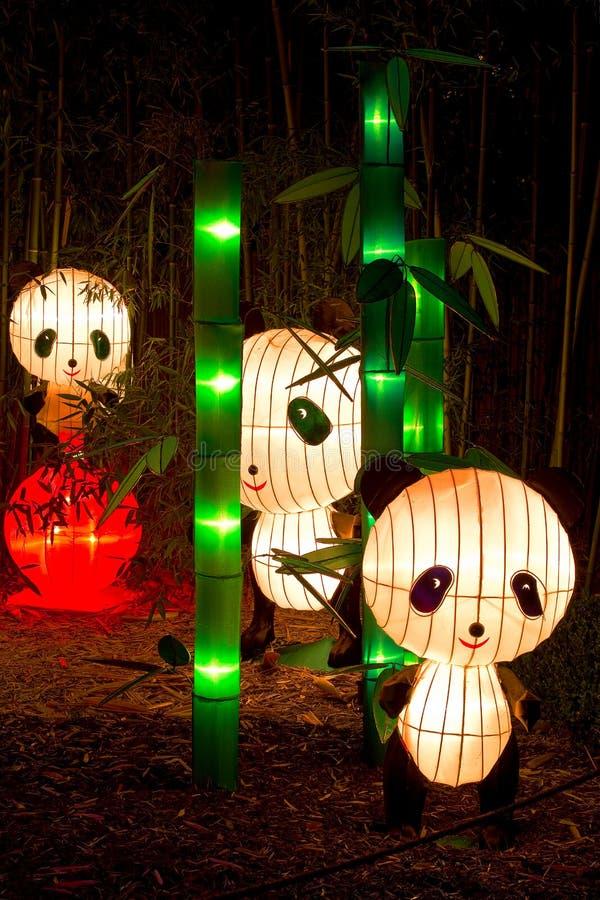 Trois pandas de l'affichage du paradis du panda photos libres de droits