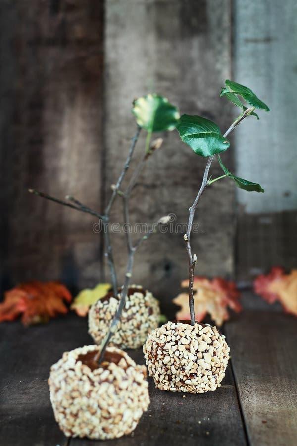 Trois pommes de caramel photo libre de droits