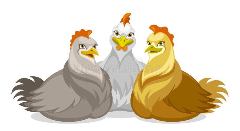Trois poulets illustration stock