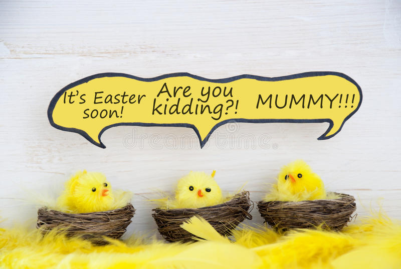 Trois poussins de Pâques avec le ballon comique de la parole racontant une plaisanterie image stock