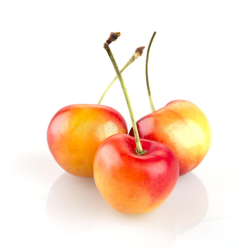Trois Rainier Cherries photographie stock