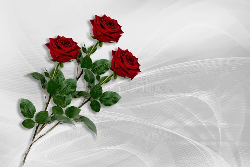 Trois roses rouges se trouvent sur un fond blanc gris images stock