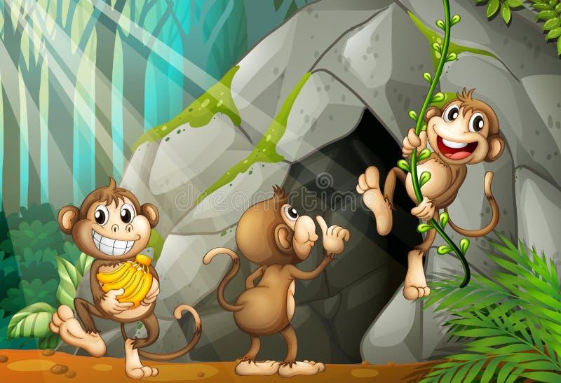 Trois singes vivant dans la caverne illustration de vecteur