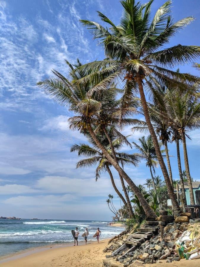 trois surfers avec des planches de surf fonctionnant sur l'océan Palm Beach image libre de droits