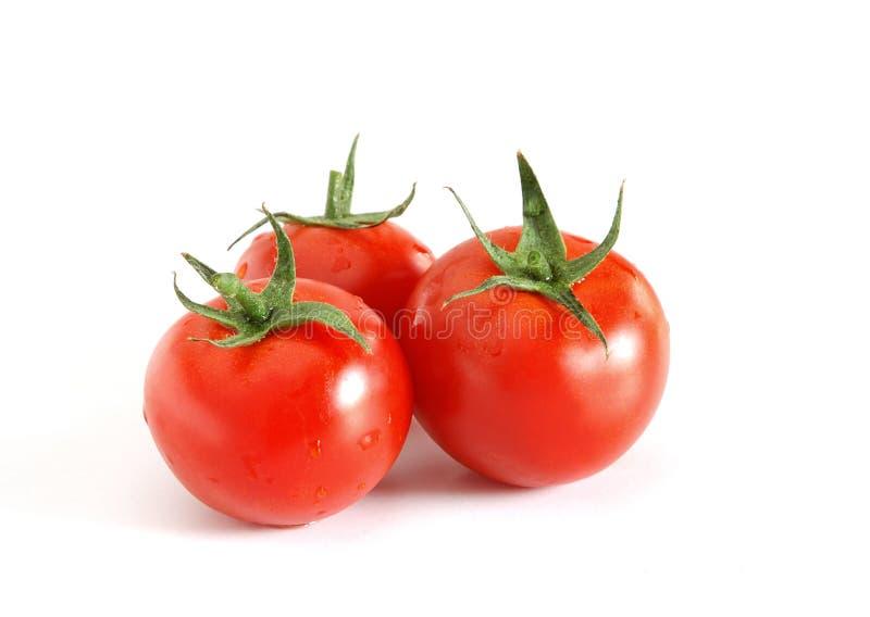 Trois tomates images stock