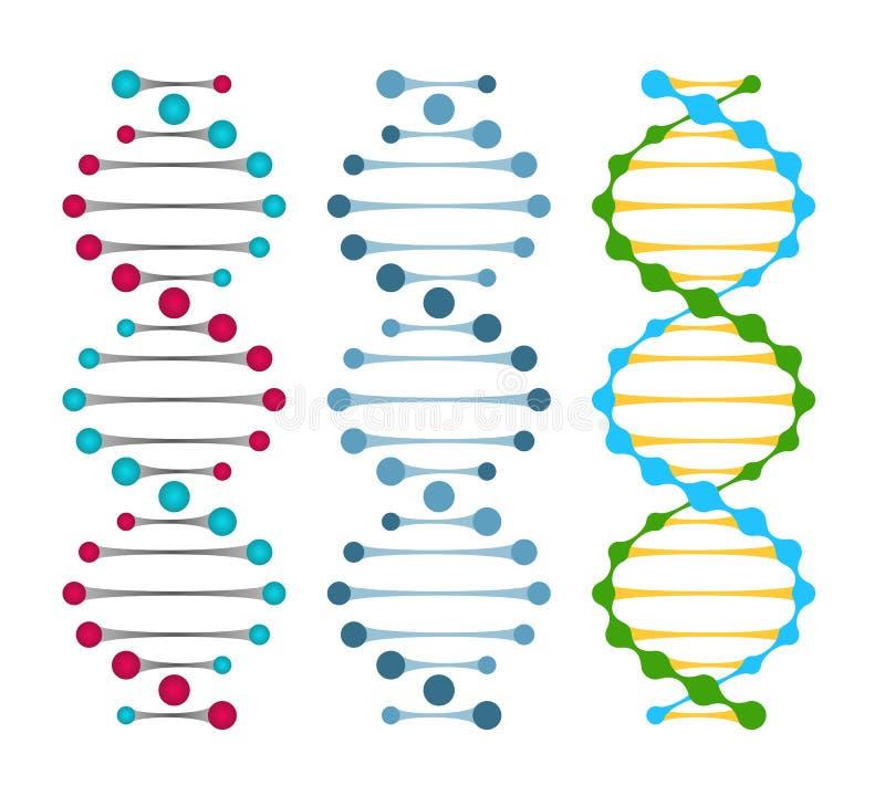Trois variantes des molécules d'ADN de double brin illustration stock