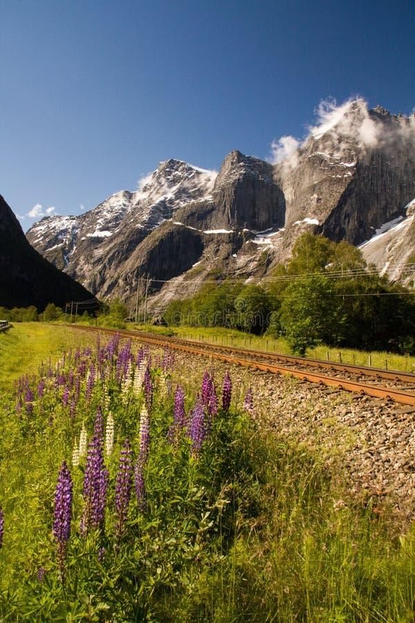 Troll стена, самая высокая вертикальная сторона утеса в Европе, Romsdal, Норвегии стоковое изображение rf