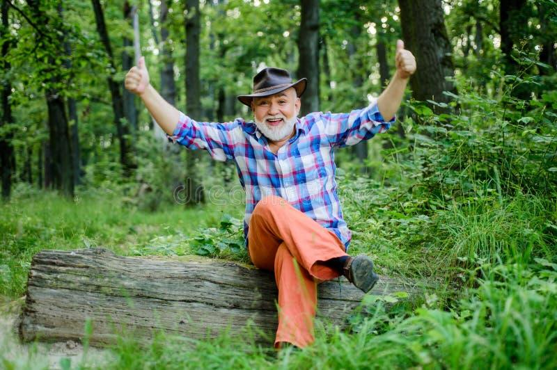 Trollkarl i begrepp för skogskogsarbetaretrollkarl Folk magi Mogen man med skägget i hatt gammalt klokt f?r man V?xt- boter fotografering för bildbyråer