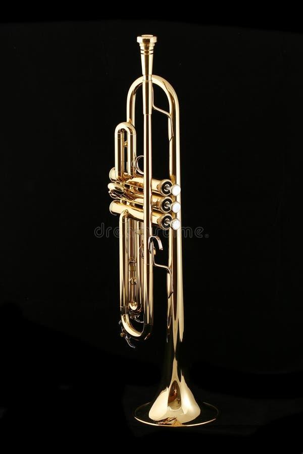 Trompeta de oro fotografía de archivo