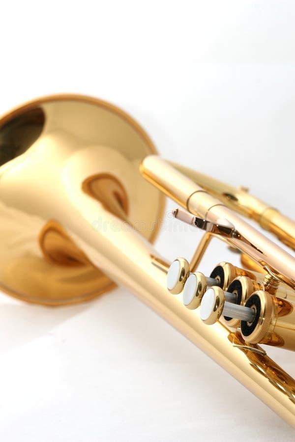 Trompeta del oro imagen de archivo