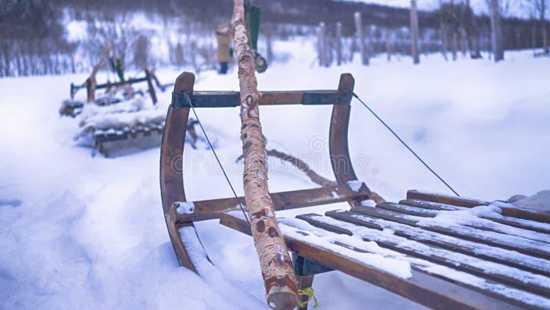 Tromsø, έλκηθρο ταράνδων της Νορβηγίας Sami στο χιόνι στοκ φωτογραφία με δικαίωμα ελεύθερης χρήσης