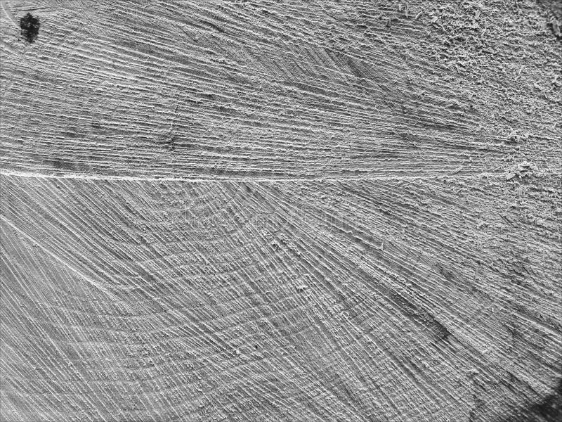 Tronçon de chêne photographie stock
