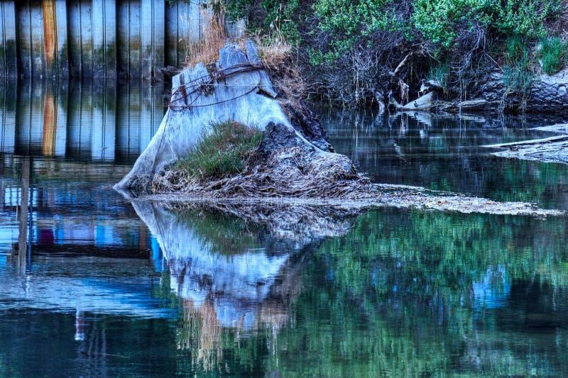Tronçon de fleuve d'Albion photographie stock libre de droits