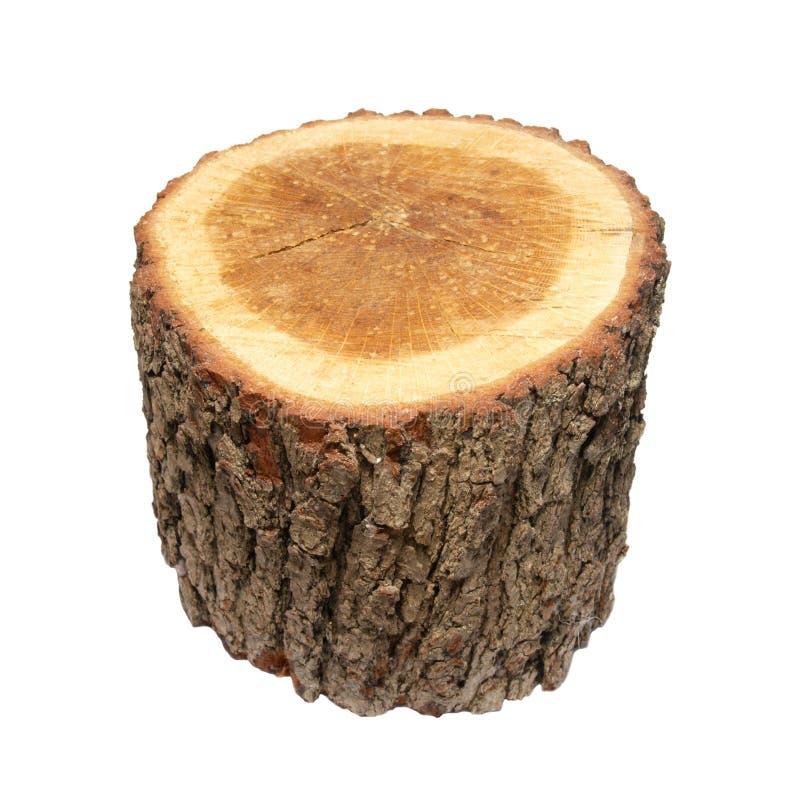 tronçon en bois photo stock