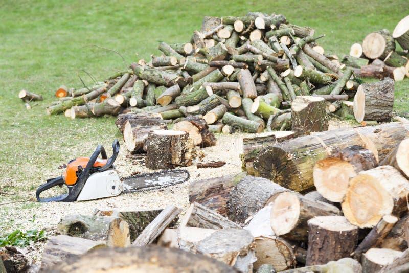 Tronçonneuse avec le bois de chauffage coupé photos stock